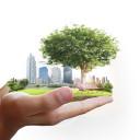 29 lipca wypada tegoroczny Dzień Długu Ekologicznego. Ośmiu na dziesięciu Polaków przejmuje się zmianami klimatu