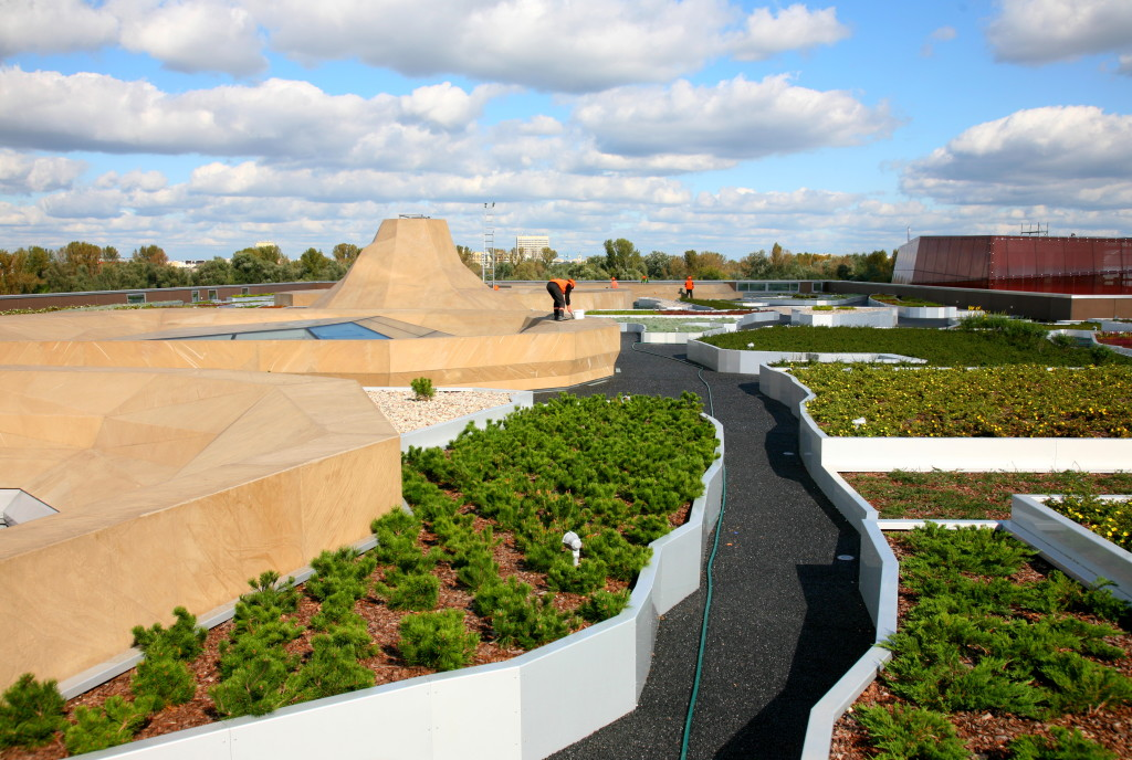 Dach zielony na Centrum Nauki Kopernik w Warszawie, źródło: Optigruen