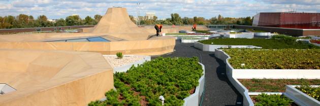 Zielone dachy w polskich miastach