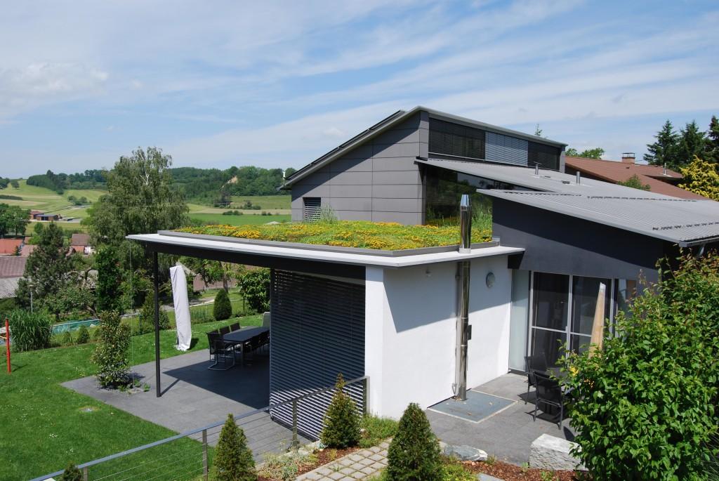 Dach zielony fot. Optigruen