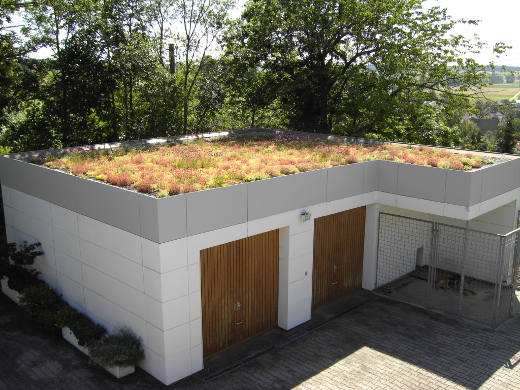 Dach zielony nad garażem, fot. Optigruen
