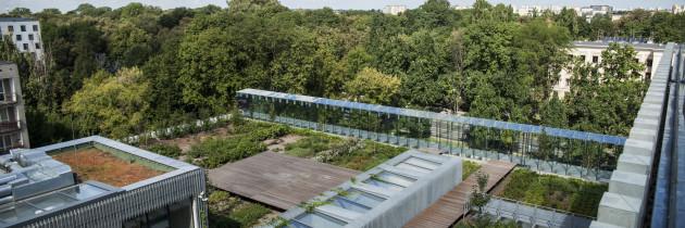 Dachy zielone Centrum Spotkania Kultur w Lublinie