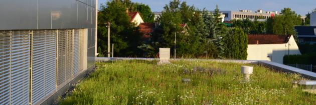 Inwentaryzacja dachów zielonych na obszarze Krakowa