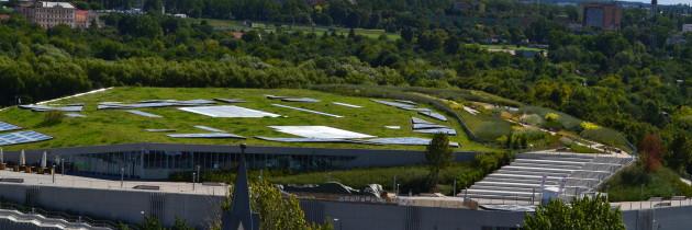 Dachy zielone w procesach adaptacji do zmian klimatu