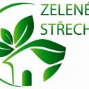 Czechy dotacje z Ministerstwa Środowiska na budowę zielonych dachów