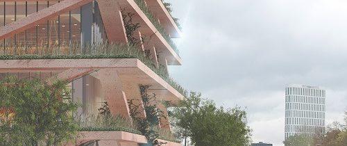 Zielony dach i tarasy nowego budynku SGH w Warszawie