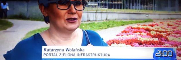 Wypowiedź Katarzyny Wolańskiej w TVN24 – 16.08.2018