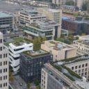 Czym jest zielona infrastruktura – dachy zielone jako element zielonej infrastruktury w miastach