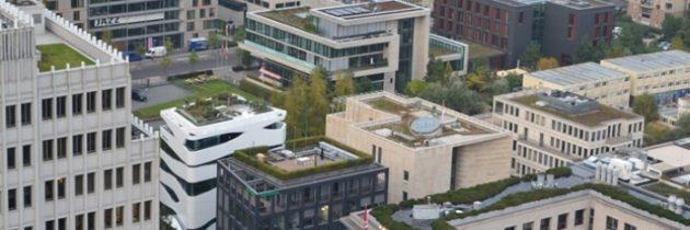 Berlin wspiera zielone dachy – od 2019 program o wartości 1,5 miliona euro