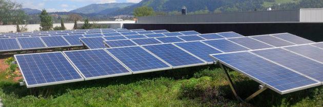 Fala renowacji: dachy zielone obniżają emisyjność ogrzewania i chłodzenia budynków