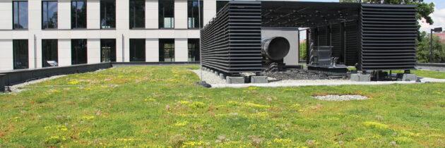Pracownia AP Szczepaniak: trendy architektoniczne na rok 2021